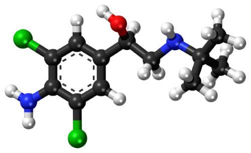 clenbuterol structure